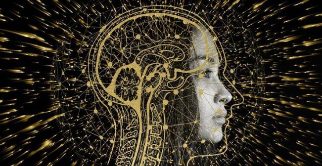 """科学家研发出""""读心术"""",直接将脑电波翻译成文本,错误率低至 3%"""